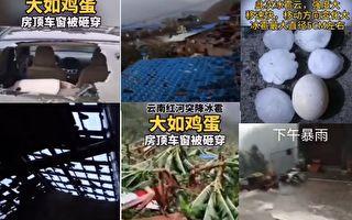 4月22日,雲南紅河州遭大冰雹襲擊,有的冰雹有雞蛋大小。(視頻截圖合成)