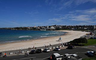 悉尼邦岱海滩下周重新开放 但仅限游泳冲浪