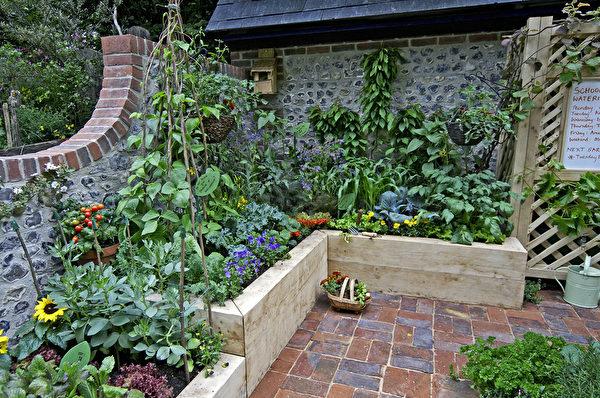 花园, shutterstock