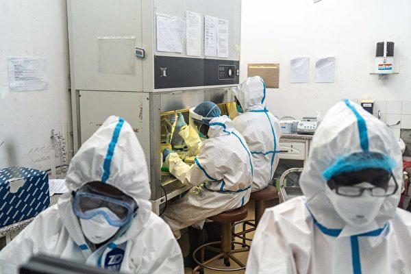 實驗室工作人員在檢測病毒