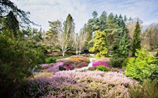 温市植物园和高尔夫球场5月1日重新开放