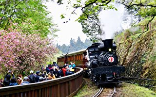 《2020林铁花季主题列车影像征集》截止日5月31日