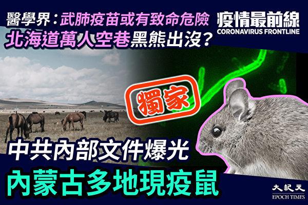 【疫情最前线】中共内部文件曝光 内蒙古现鼠疫