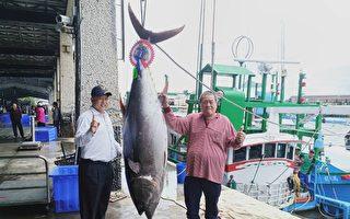 台東成功「第一鮪」現身 200公斤蘭嶼捕獲