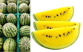 又沙又甜的西瓜要怎麼挑選?老瓜農教4秘訣