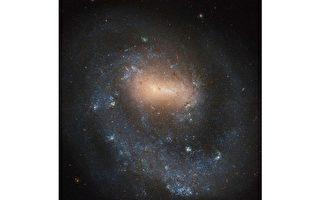 NGC 4618:只有一个旋臂的螺旋星系