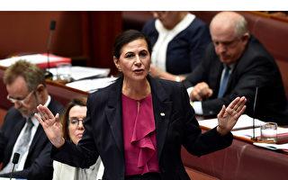 澳洲联邦参议员:应在贸易上与中共脱钩