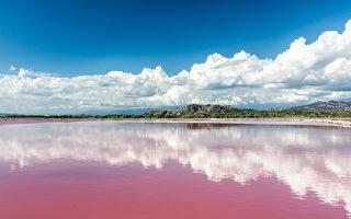 墨西哥湖泊一夜之間變粉紅色 民眾驚恐