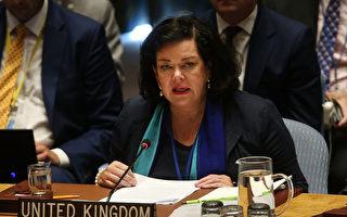 英德驻美大使支持调查疫情真相 促世卫改革