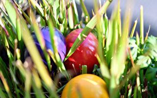 復活節川普致辭:美國人活在神的話語中