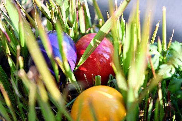 复活节川普致辞:美国人活在神的话语中