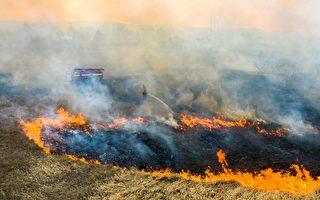 森林大火燃烧10天 逼近切尔诺贝利核电旧址