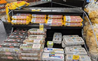 雞蛋怎可漲價 消費者提集體訴訟