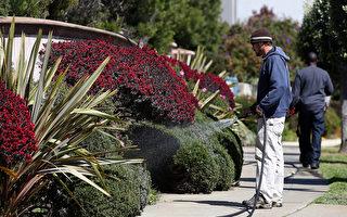 湾区居家防疫令稍放松 允许建筑园艺户外活动