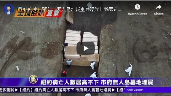 【全球疫情直击】纽约死者增 无人岛埋尸画面曝光