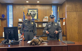 美國警犬寶寶在自己的宣誓就職典禮上睡著