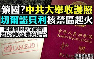 张林:大量中国人出国旅游的时代已经过去
