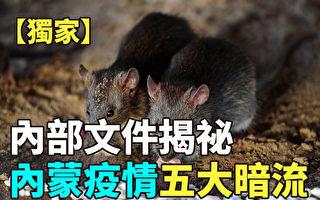 【纪元播报】内部文件揭秘 内蒙疫情五大暗流