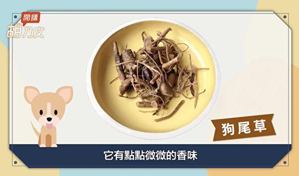 如果想要更開胃的話,還可以在四神湯裏頭加一點狗尾草。(胡乃文開講提供)