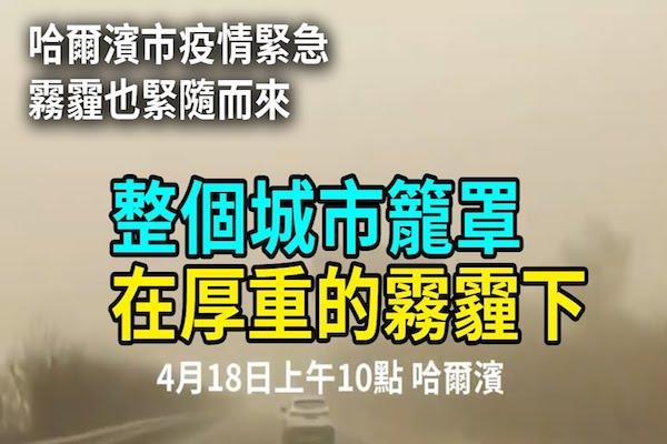 【現場視頻】疫情下的哈爾濱 霧霾紅色預警