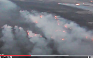 波兰最大国家公园起火 警官:堪比世界末日