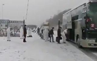 在俄中国人成批回国 避疫还是被遣返?