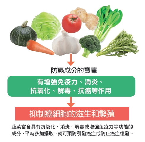 蔬菜富含具有增強免疫力等功能的成分,可預防引發癌症或防止癌症復發。(和平國際提供)