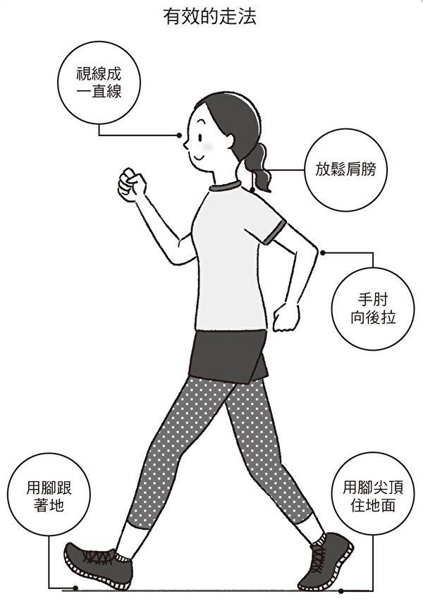 讓走路達到更好運動效果的方法:腳跟先著地、手肘向後拉等。(聯經出版)