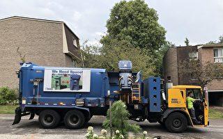 多倫多恢復收庭院垃圾