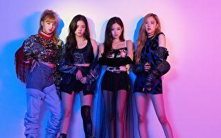 YG娱乐证实 BLACKPINK准备6月回归歌坛