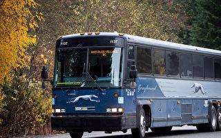 乘客流失95% 加國灰狗停運所有巴士線路