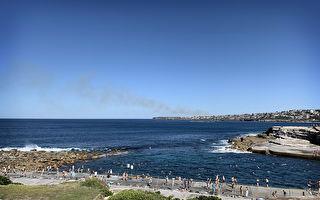 限制放松 悉尼部分受欢迎海滩重新开放