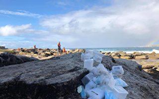 中国集装箱坠海酿大祸 澳洲海滩被迫关闭