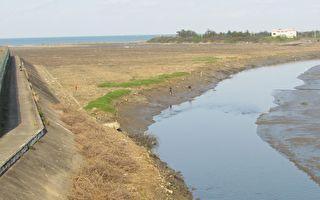 香山湿地完成红树林整治 鱼虾贝蟹生意盎然