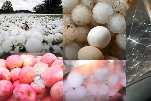 【現場視頻】山東重慶降冰雹 有的大如雞蛋