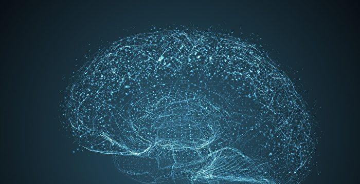 新技術在盲人大腦上直接成像