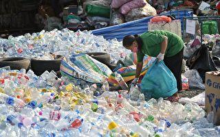 荷蘭公司研發用植物做的瓶子 一年內可分解