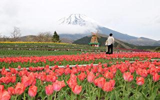日本政府拚觀光 砸百億美元請你去玩