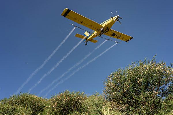 2020年5月23日,肯尼亞桑布魯郡,小飛機在空中對蝗蟲噴灑農藥。(Fredrik Lerneryd/Getty Images)