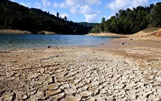 奧克蘭市長 : 乾旱為供水敲響了 「警鐘」