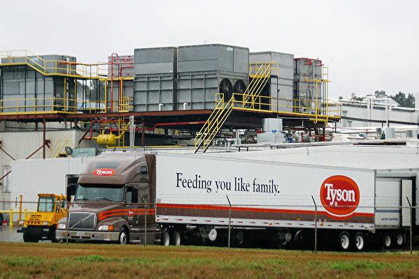 泰森食品的一輛雞肉卡車在美國德州加工廠卸貨。(Photo by Mario Villafuerte/Getty Images)
