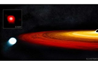 恒星虎口脱险 逃过黑洞吞噬