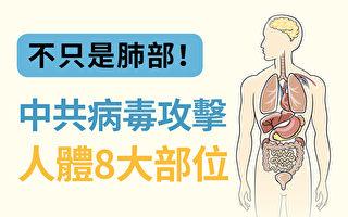 中共病毒對人體8大部位造成影響。(大紀元)
