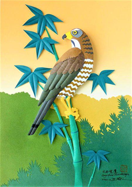 王楨文透過簡單的美術用具剪刀、尺、筆、色紙、樹脂及巧手剪出台灣藍鵲、帝雉、藍腹鷳、黑頭翡翠、黄鸝等作品。