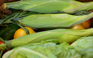 纽约食品银行半年将购2千多万元本地农产品