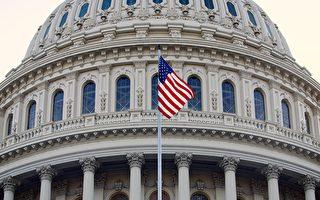 美国会大选 女议员人数或将创纪录