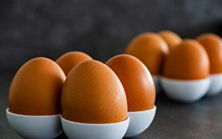 澳十大品牌雞蛋 ALDI Lodge Farms最受歡迎