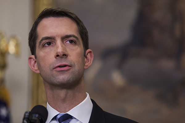 參議員Tom Cotton。資料圖(Zach Gibson – Pool/Getty Images)