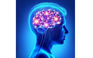 科学家找到大脑特殊区域瞬间关闭痛觉