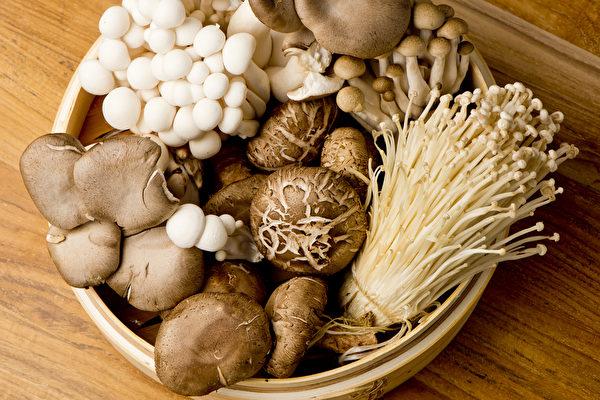 癌症患者每天可吃1份蘑菇。菇類的多醣體已證實具調節、提升免疫功能的作用。(Shutterstock)